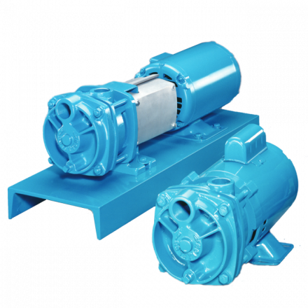 Cast Iron Regenerative Turbine / Peripheral Pumps