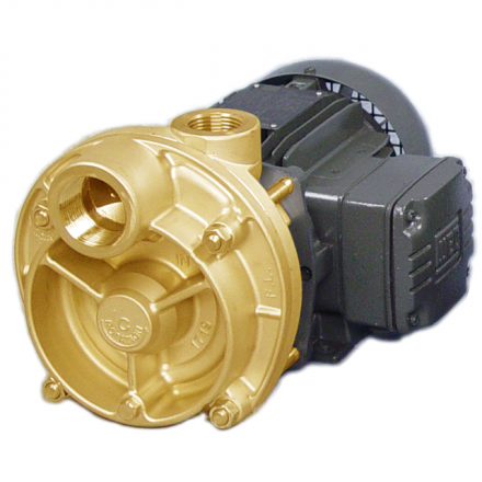 Bronze Regenerative Turbine / Peripheral Impeller Pumps